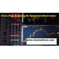 Forex Prep Academy for Beginners-Real trades