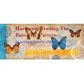 Harmonic Trading The Butterfly Pattern