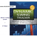 Dynamic Swing Trader-profit in 10 minutes(Enjoy Free BONUS Trend Signal Indicator v1.1)