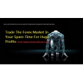 Trade The Forex Market In Your Spare-Time For Huge Profits