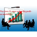 Way-Grow forex Expert Advisor automated trading system super scalper big profit - no martiangle