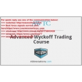Wyckoff Analytics - Advanced Wyckoff Trading Course (Total size: 297.1 MB Contains: 1 file)