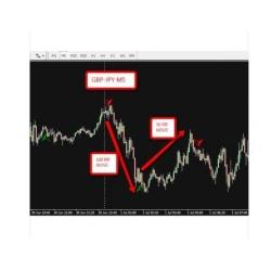 Amazing MT4 Forex Indicator (Enjoy Free BONUS Diamond Power Trend trading system)