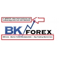BKForex - Master Forex Fundamentals + Day Trading Masterclass (Enjoy Free BONUS Forex Juggernaut)