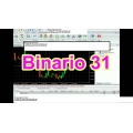 Binario forex Expert Advisor - automated trading system