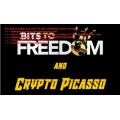 Crypto Picasso Bits to Freedom Video Course