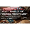 Big Forex Fortune online session day one