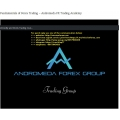 Fundamentals of Forex Trading - Andromeda FX Trading Academy