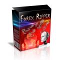 Forex Ripper