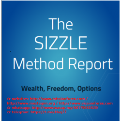 Sizzle Method Checklist and SIZZLE Method Report(SEE 1 MORE Unbelievable BONUS INSIDE!)