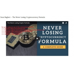 Sean Bagheri - The Never Losing Cryptocurrency Formula