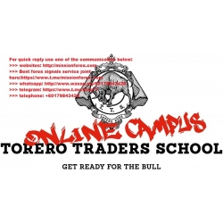Torero Traders School - Forex Trading MasterClass (Total size: 1.43 GB Contains: 12 folders 28 files)
