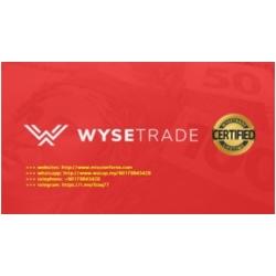 (forex markets)WyseTrade Trading Masterclass Course