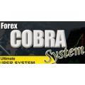 Forex Cobra Trading Strategy MT4 - Trend Following System(SEE 1 MORE Unbelievable BONUS INSIDE!)100 Pips Daily EA v1.01