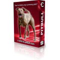 "Forex Pitbull v4.0 bonus For Arrow Lover"" Indicator"